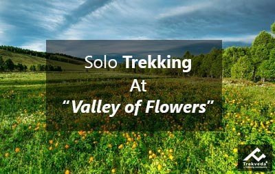 Solo Trekking At Valley of Flowers