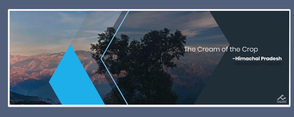 The Cream of the Crop: Himachal Pradesh