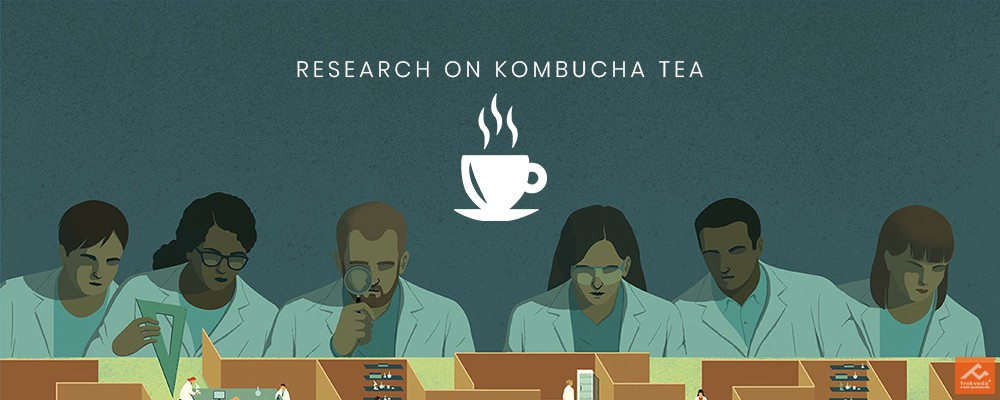 Disease Curing Research on Kombucha
