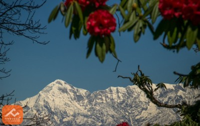 Best Weekend Treks in Uttarakhand