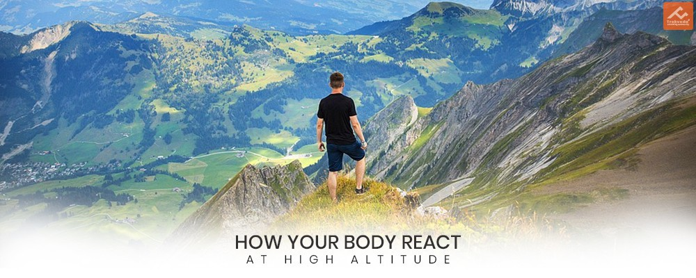 Body React at High Altitude